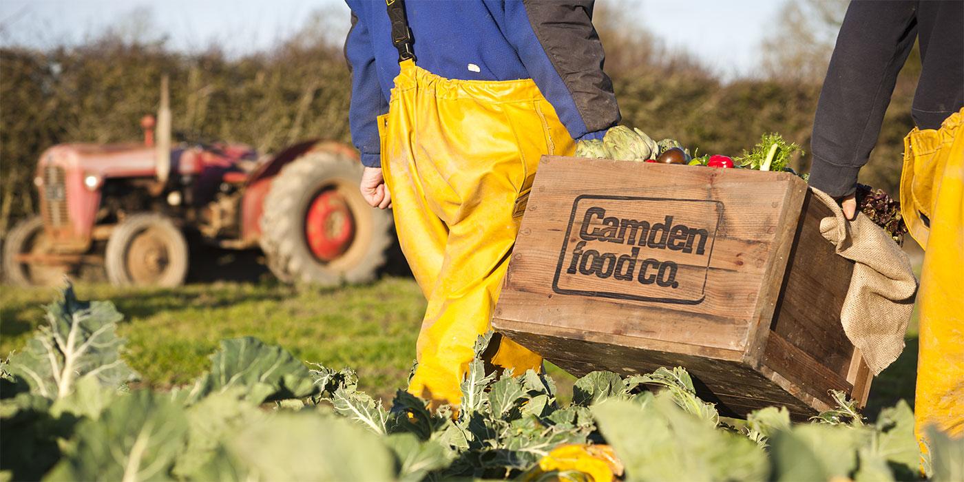 camden-farm